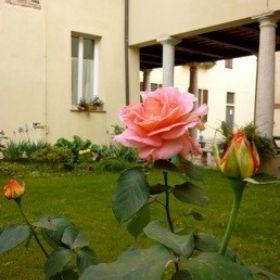 Casa della Carità di Pavia